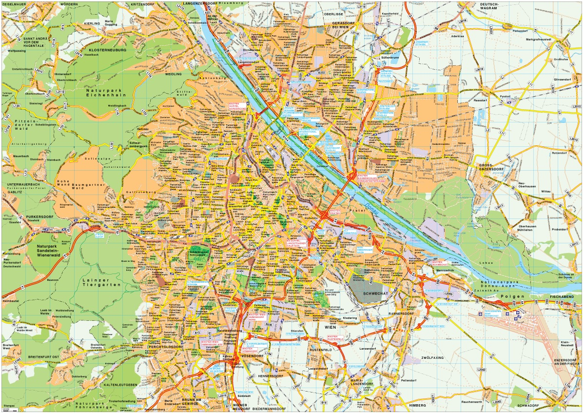 Wien map vector