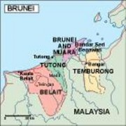 brunei_political vector map