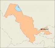 uzbekistan_blankmap vector map
